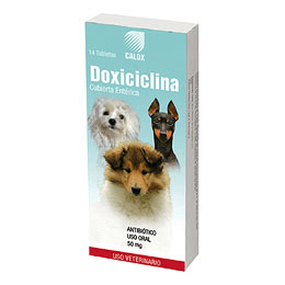 DOXICICLINA / MEDICAMENTOS / ANTIBIOTICO / PERROS / GATOS / INFECCION / 50 MG / 100 MG