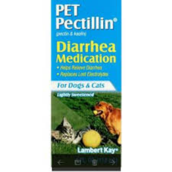 PET PECTILLIN / SUSPENSION / DIRREA / PEROS / GATOS